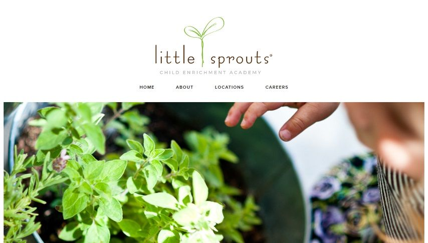 little-sprouts